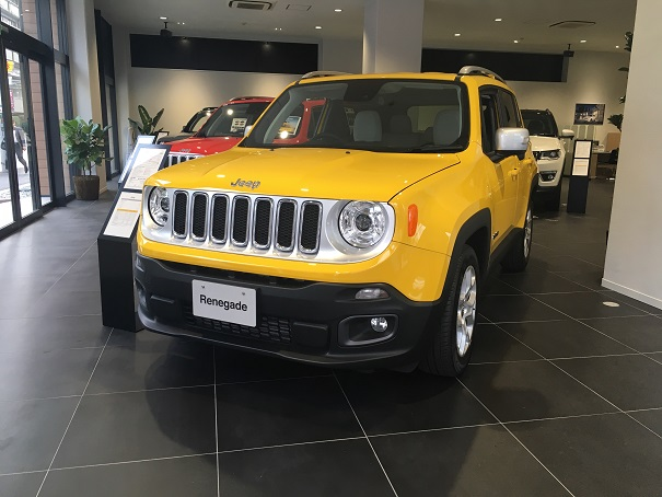 Renegade Limited