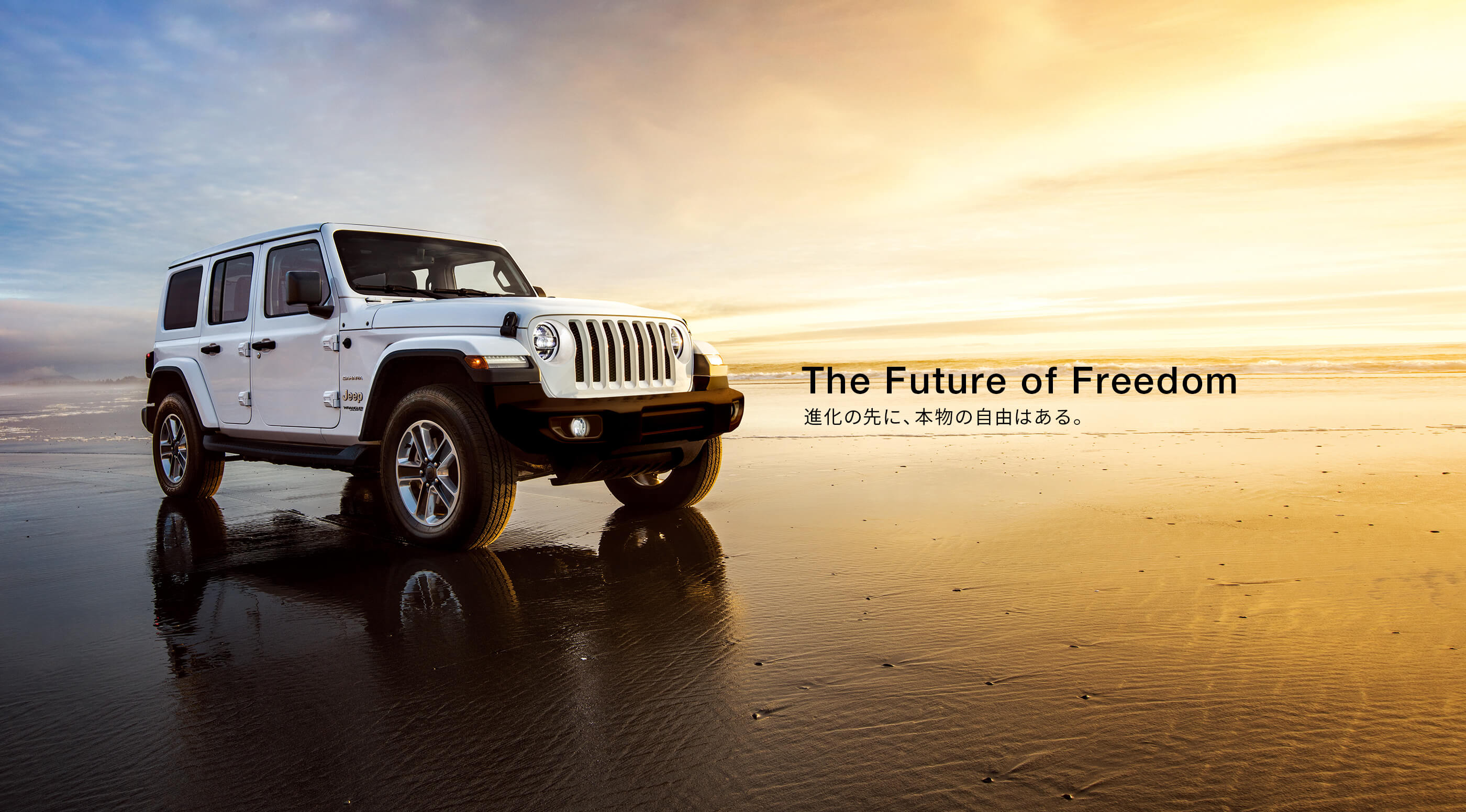 The Future of Freedom キャンペーン