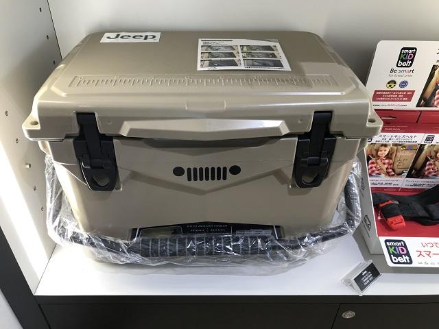 COOLER BOX 20L